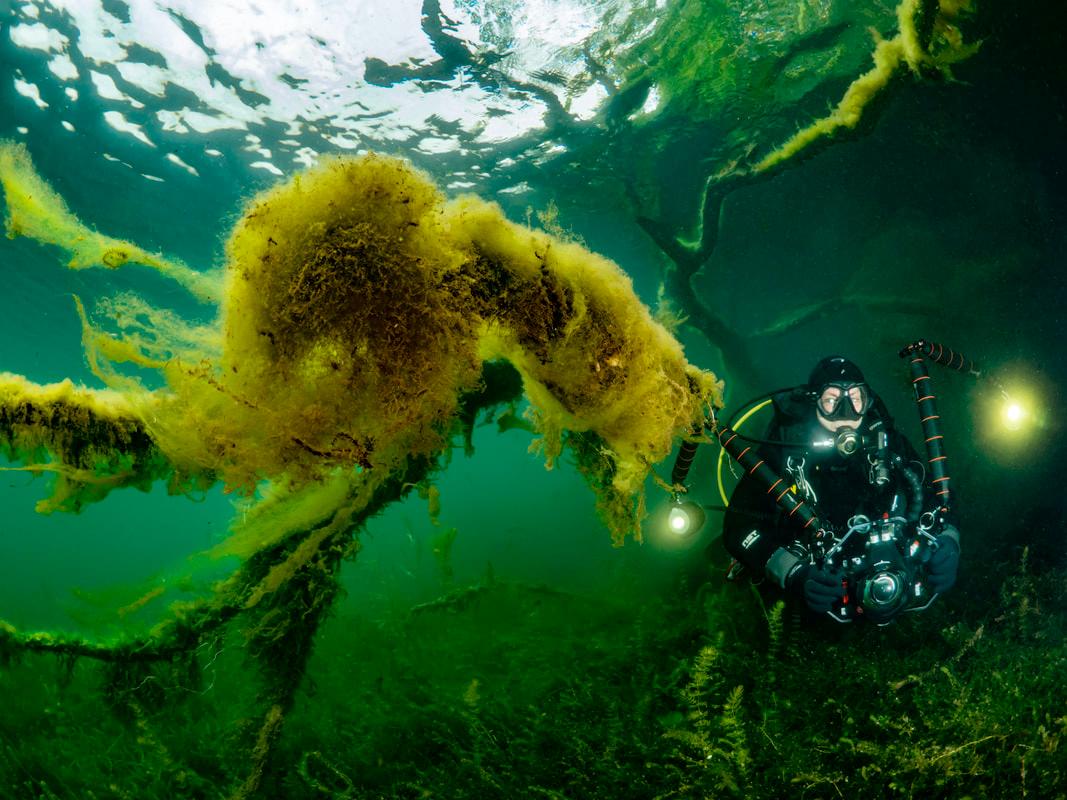 Episode #11: Onderwaterfotografie met Filip Staes en Luc Rooman